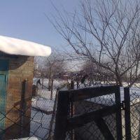Зима на Кубани, Каневская