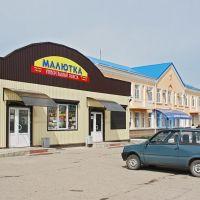 Каневская - рядом с детской поликлиникой на ул. Горького - 4.04.2010 г., Каневская