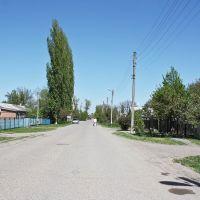 Каневская, ул. Промысловая - 2.05.2010 г., Каневская
