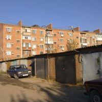 Во дворе дома 44 по улице Вокзальной (25.10.2010), Каневская