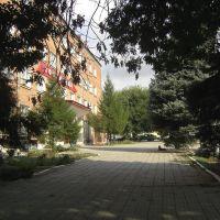 Гостиница, City Hotel, Красноармейская
