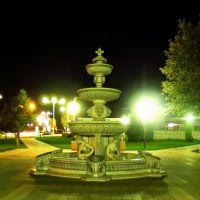 Кривой фонтан, Красноармейская