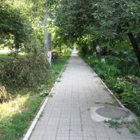 Зелёная дорожка, Красноармейская