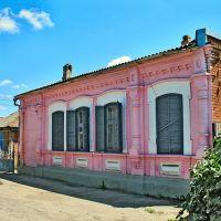 розовый мамонт, Кропоткин