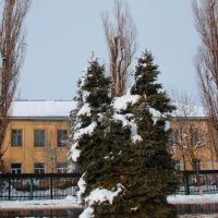 Школа №7, ул. Коммунистическая, Крымск