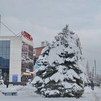 2012 г., Крымск, KRYMSK, Крымск
