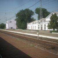 Станция Кущёвка, Кущевская