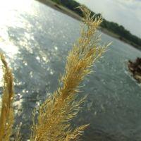 На берегу Лабы, Лабинск