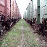 Железная дорога, Лабинск