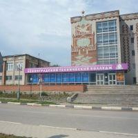 Ленинградский технологический колледж, Лениградская