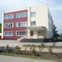Центральная библиотека, Лениградская