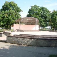Летняя сцена, Лениградская