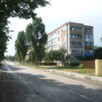 ул. Кооперации, Лениградская