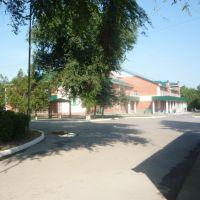 Родильный дом, Лениградская