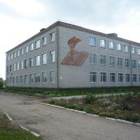 МОУ СОШ №2, Лениградская