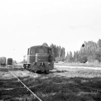 Станция.1981г., Мостовской