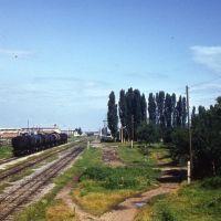 Станция.1983г., Мостовской