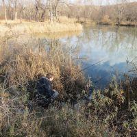 пруд возле р.Уруп, Отрадная