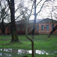 старая школа, Отрадная