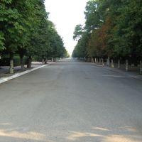 ул. Красная., Отрадная