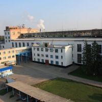 Павловский сахарный завод, Павловская