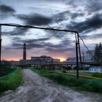 Sugar Factory at Dusk, Павловская
