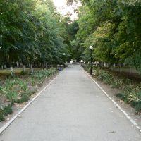 Дорожка в сквере Ленина, Приморско-Ахтарск