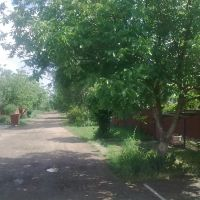Проспект Есенина, Северская