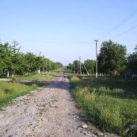 улица Артюха Станица Староминская, Староминская