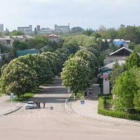 Вид на ул.Первомайскую из Дворца Культуры, Тбилисская