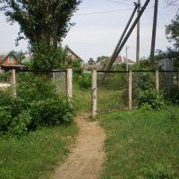 Вход в школу с ул.Тургенева, Тбилисская