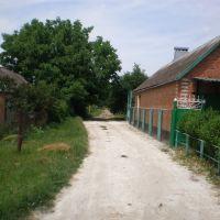 Проулок с ул.Тургенева на ул.Энгельса, Тбилисская