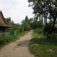 Проулок между Энгельса и Тургенева, Тбилисская