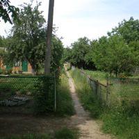 Проулок между Энгельса и Гагарина, Тбилисская