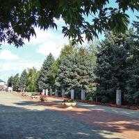 Аллея Героев в Мемориальном сквере., Тимашевск