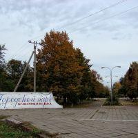 Осенний парк. - Autumn Park., Тимашевск