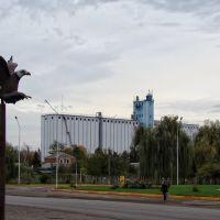 Тимашевск. Элеватор. - Grain elevator., Тимашевск