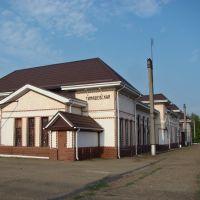 Тимашевский вокзал. - Railway Station., Тимашевск