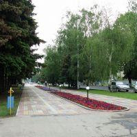 В парке, Тихорецк