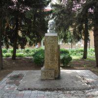 Бюст Ленина у Горгаза, Тихорецк