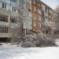 Март 2010, ул. Октябрьская 93, Тихорецк