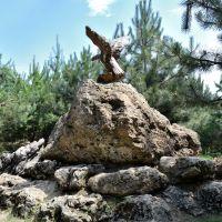 Птица какая-то / The stone bird, Усть-Лабинск
