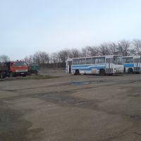 ПассажирАвтоТранс, Усть-Лабинск