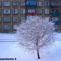 г. Шарыпово, Шарыпово