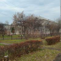 до 170 - ой школы недалеко, Зеленогорск