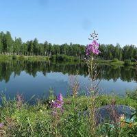 Озеро за сибирятским, Агинское