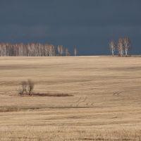 Autumn fields, Балахта