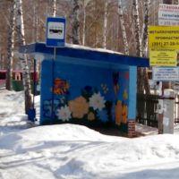 """Остановка-граффити """"Цветы"""", Большая Мурта"""