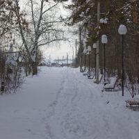 Грустный зимний парк, Большая Мурта