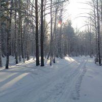 Зима, Большая Мурта